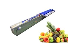 Classificador Eletrônico para Frutas