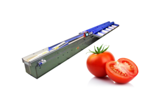 Classificador de Tomate